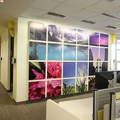 BP Petroleum Office Space